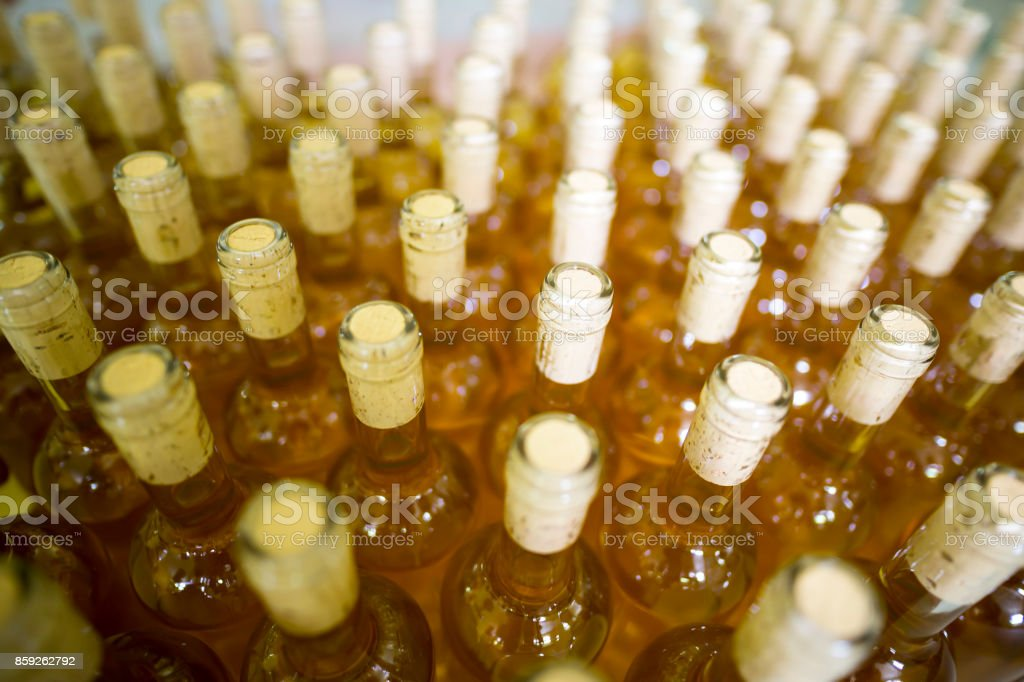 White wine bottles in a winery White wine bottles in a winery ordered for labeling before packed and shipped for sale. Aging Process Stock Photo