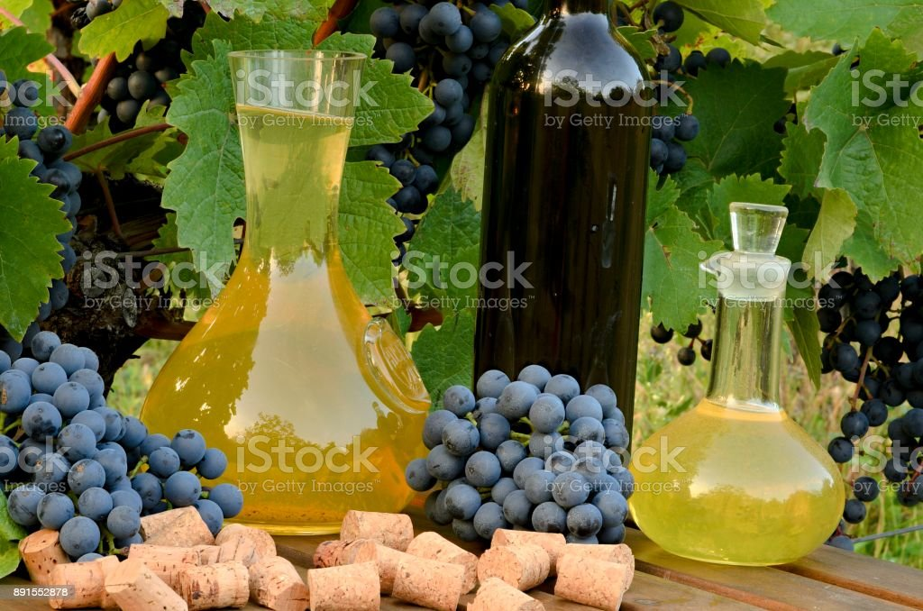 White wine in carafe and red wine in bottle on vineyard background. stock photo