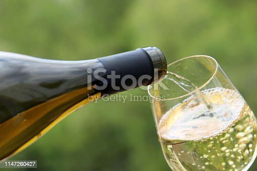 Concept of celebration, party, wine drinking outdoors, champagne tasting at winery