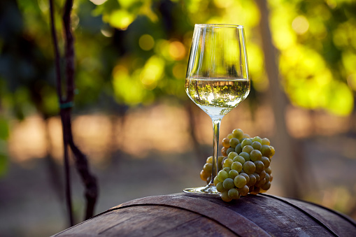 White wine with grapes on a barrel