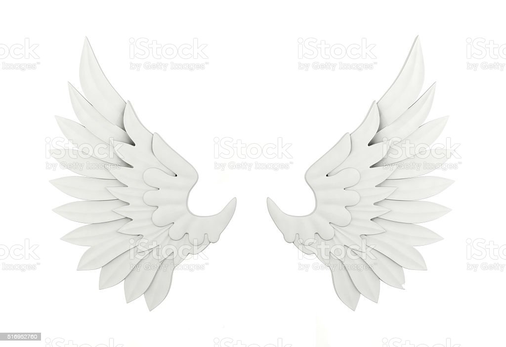 White wing isolated stock photo