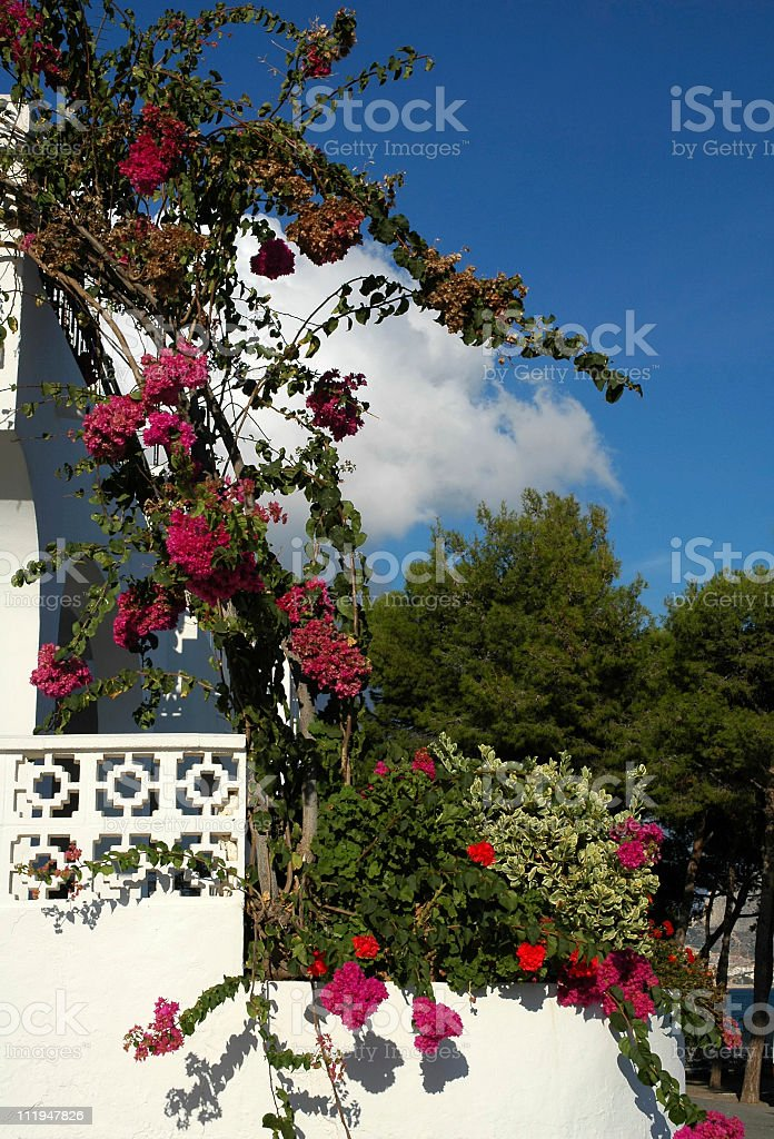 White with plants and red bougainvillea near the beach,Spain royalty-free stock photo