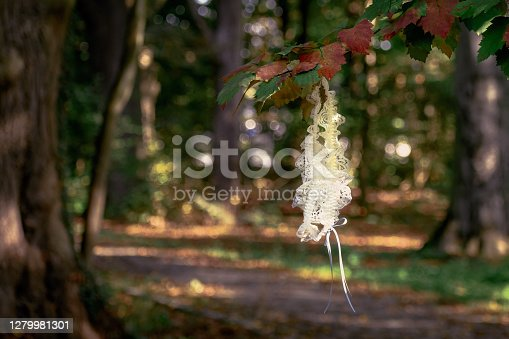 City park near hotel. Common wedding spot. Lost women white garter with delicate blue ribbon. Sun rays around magical forest path with lost lingerie hanging on autumn colored tree branch.