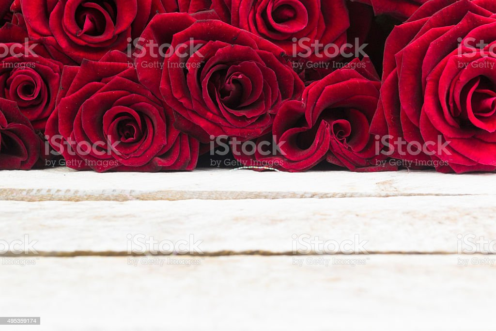 White Wood Background with Roses stock photo