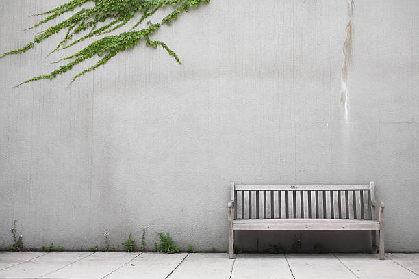 White wood bench by white wall with ivy creeping across it stock photo