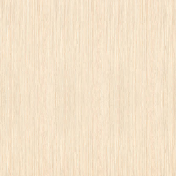 White Wood Texture White wood texture with vertical stripes. beech tree stock pictures, royalty-free photos & images