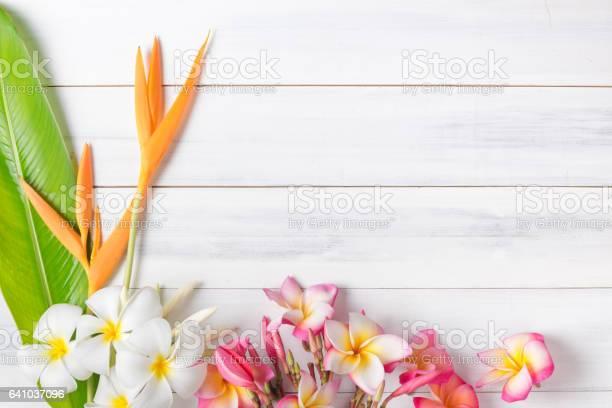 White wood texture with heliconia and plumeria flower picture id641037096?b=1&k=6&m=641037096&s=612x612&h=lpksvpfdjr1acba5g1j5  pzvypbogwubtcxzhsucy4=