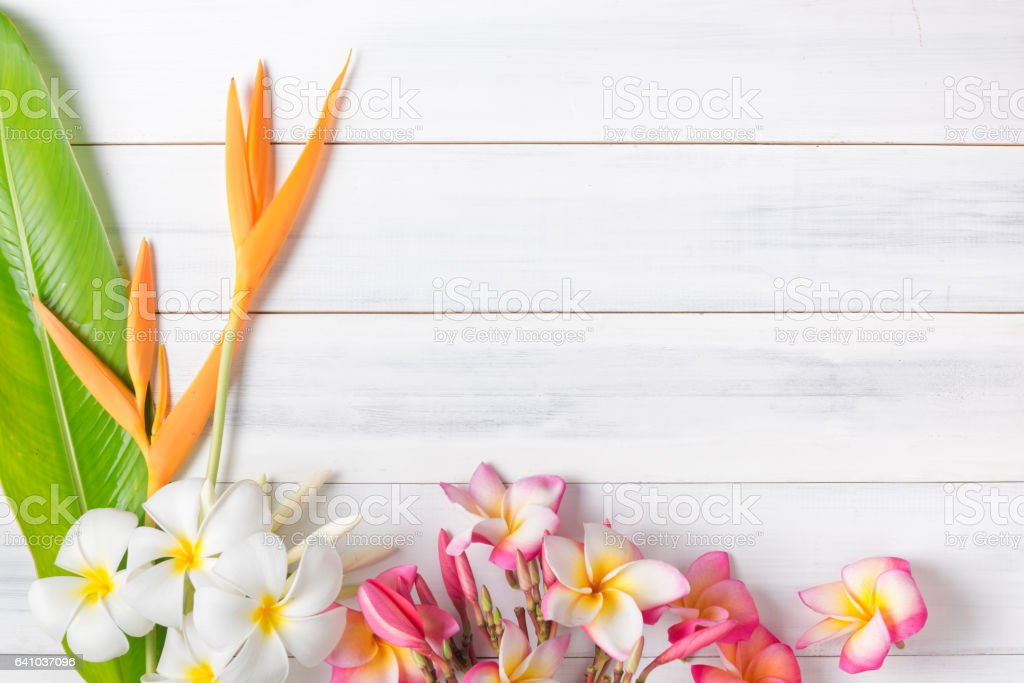 white wood texture with Heliconia and plumeria flower stock photo