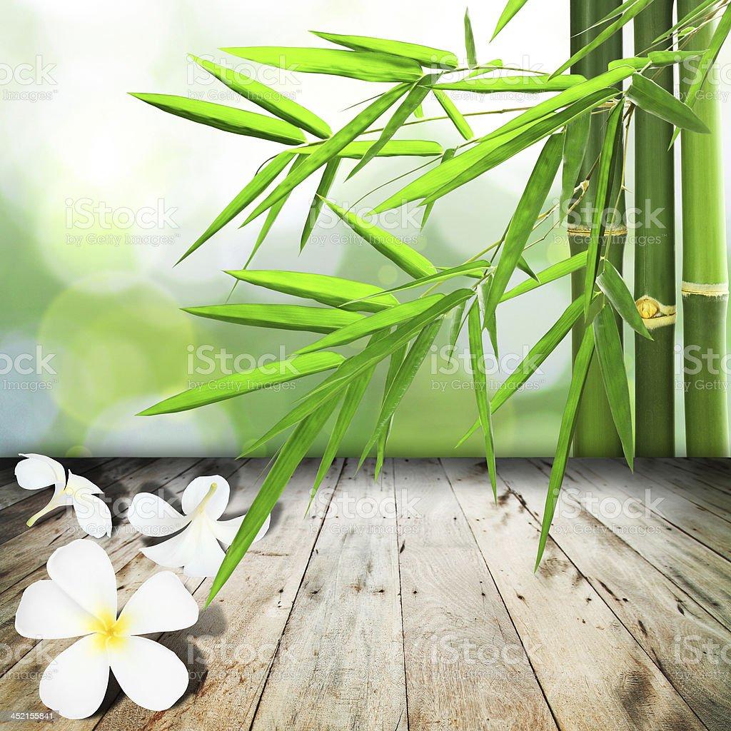 white yellow plumeria flower royalty-free stock photo