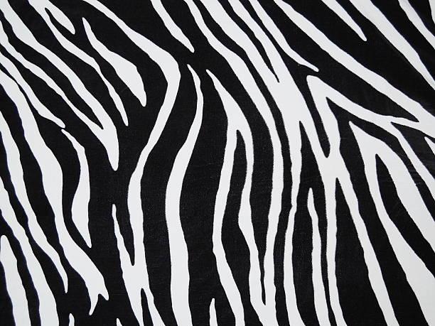 zebra branco de matérias têxteis - padrões zebra imagens e fotografias de stock