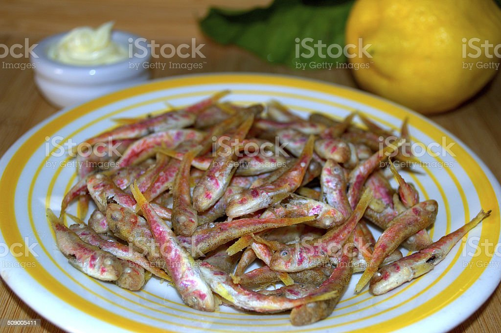 Whitebait of Surmullet, Novellame di Triglia. stock photo