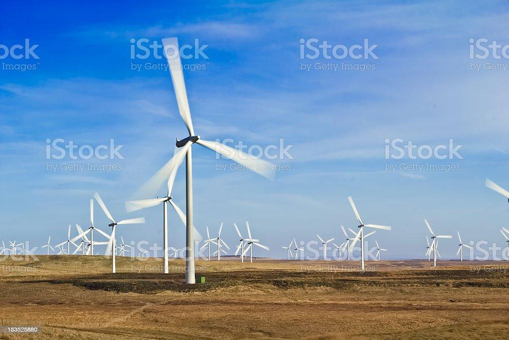 Whitelee Wind Farm stock photo