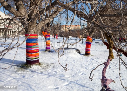 Tree trunks in winter park covered with bright knits, which protects from cold weather
