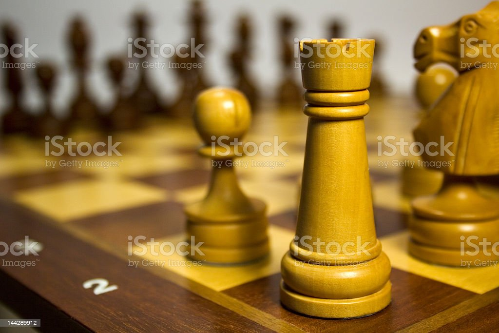 White's Left Flank royalty-free stock photo