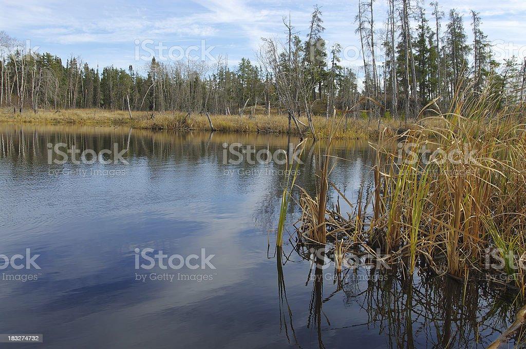 Whiteshell Pond royalty-free stock photo