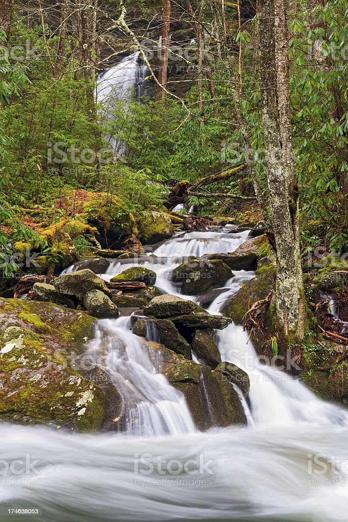 Whitewater Confluence royalty-free stock photo