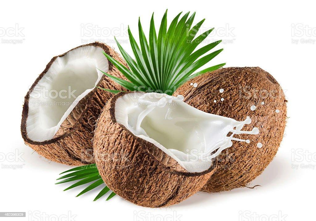 Com toque de leite de coco e folhas no fundo branco - foto de acervo
