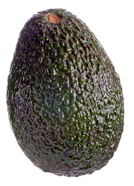 whole avocado on white background - avokado bildbanksfoton och bilder