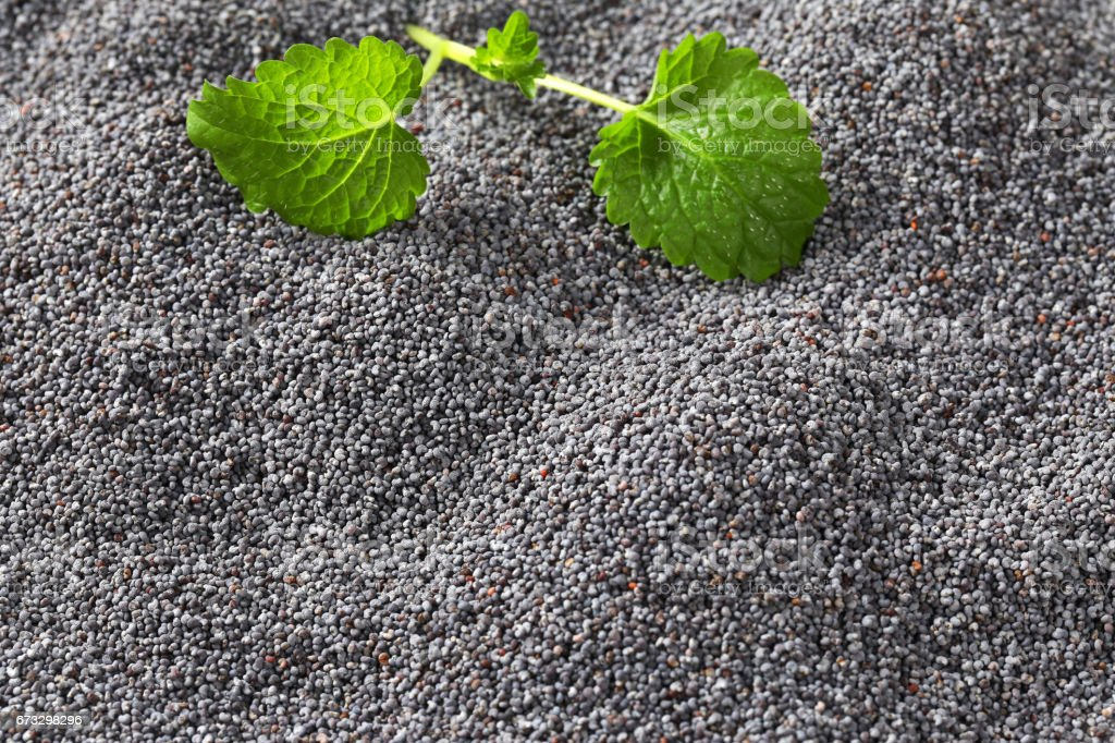 Whole black poppy seeds background royalty-free stock photo