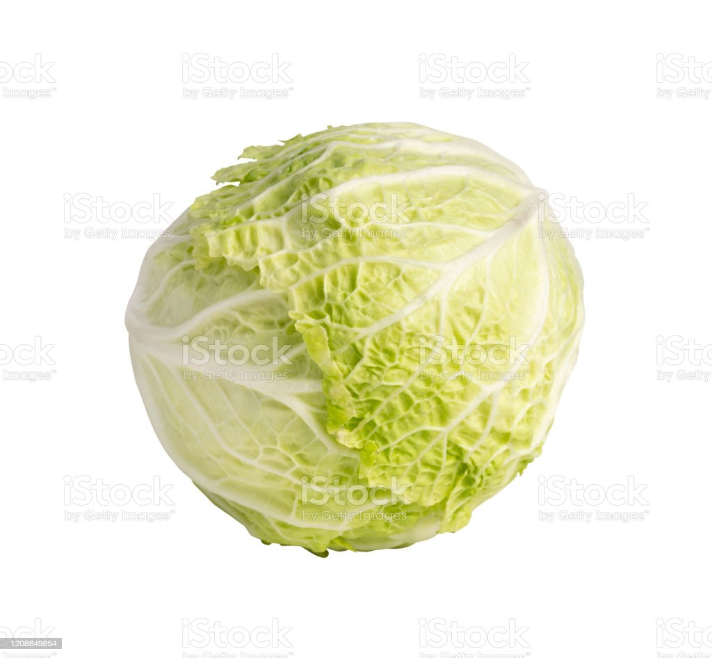 Whole Chinese Cabbage Napa Cabbage Or Wombok Stock Photo Download Image Now Istock