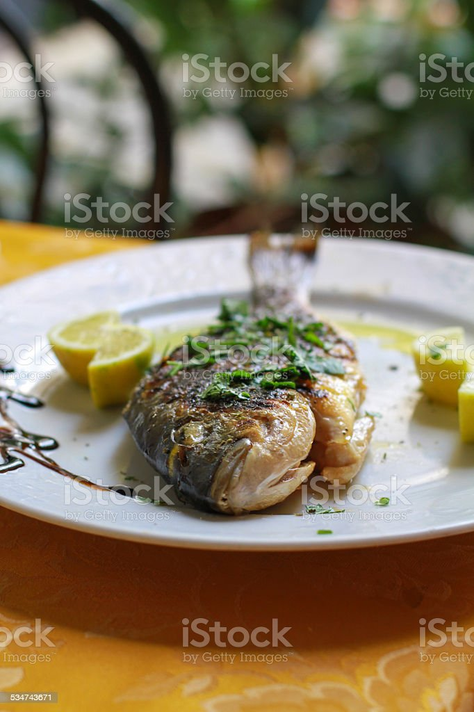 whole fish stock photo