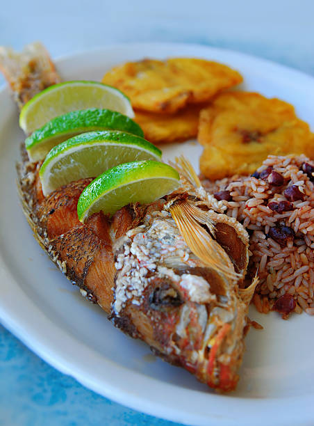 whole fried snapper - caribbean food stock photos and pictures