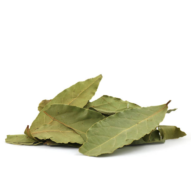 PILE OF SPICES - whole green bay laurel leaves stock photo