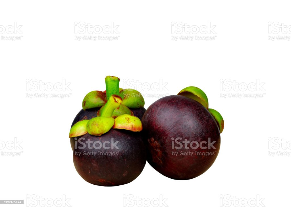 Whole mangosteen showing purple skin isolated on white background with space. Tropical fruit from Thailand. The queen of fruits. Asia fresh fruit market concept. Natural source of tannin and xanthones - Royalty-free Agriculture Stock Photo