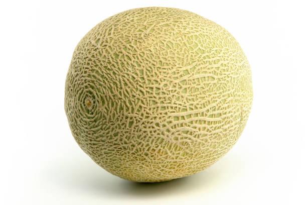 Whole melon stock photo