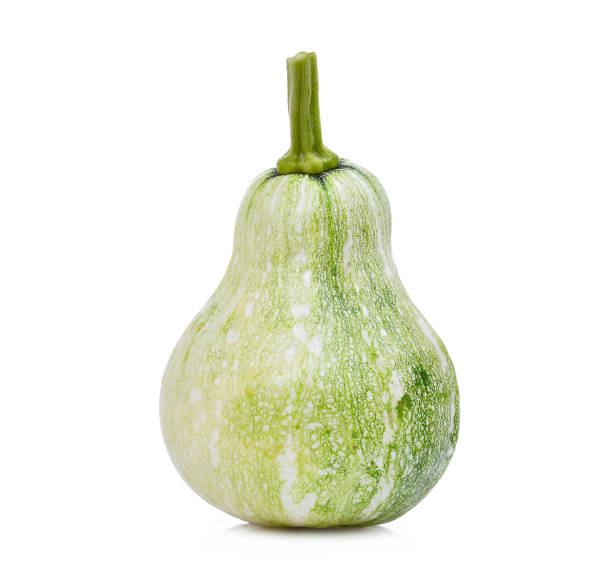 whole of young green pumpkin isolated on white background - gourd stock photos and pictures