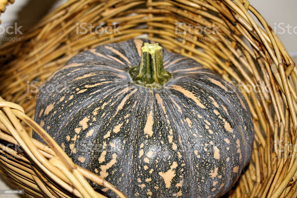 Whole Pumpkin in a Basket stock photo