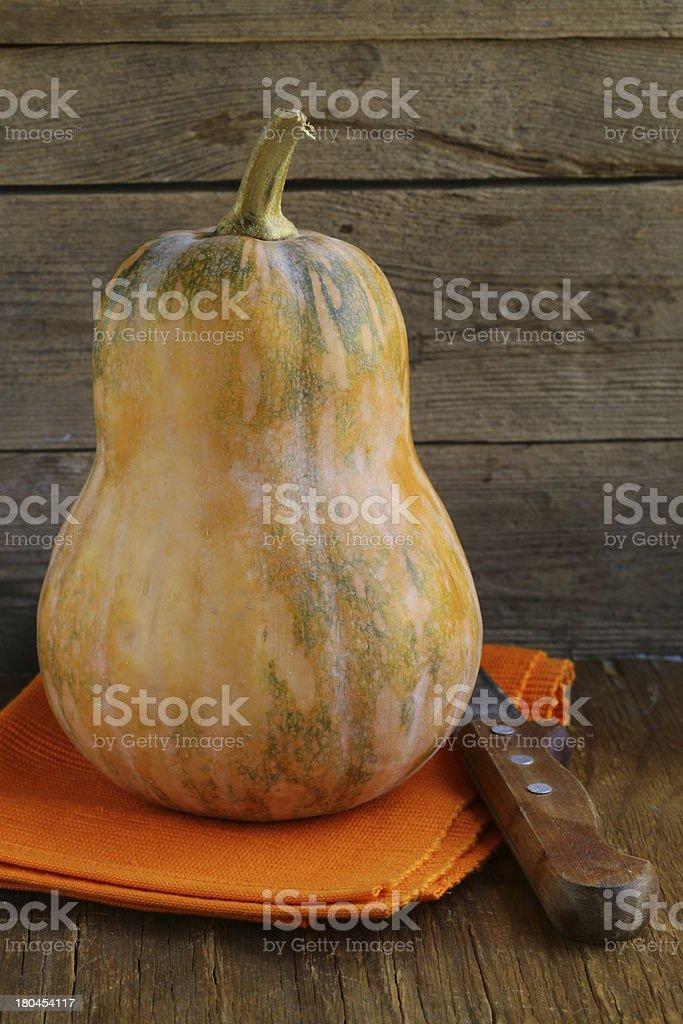 whole ripe orange pumpkin royalty-free stock photo