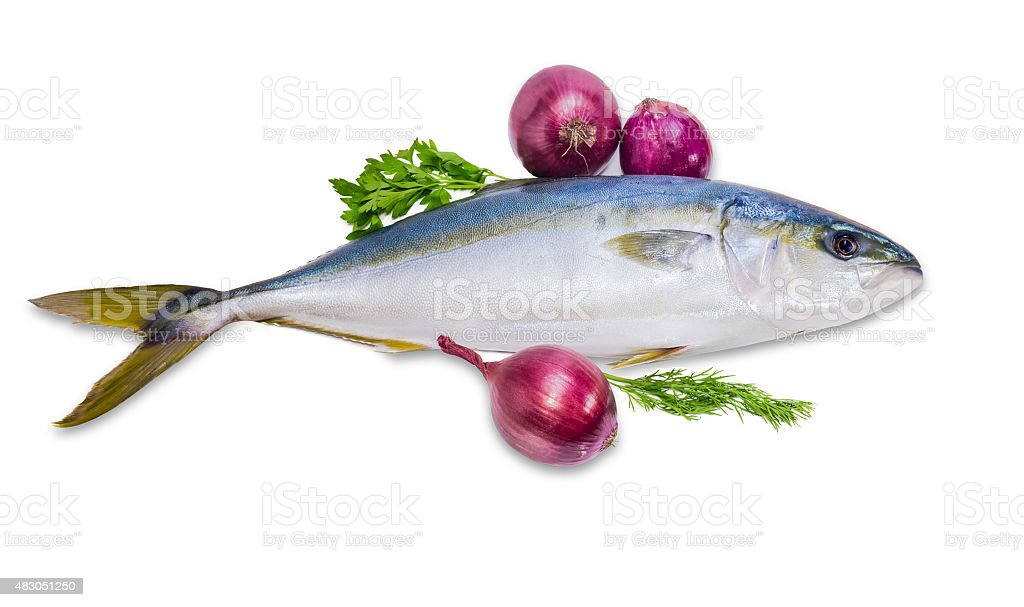 Whole round fish yellowtail, dill, parsley and red onion stock photo