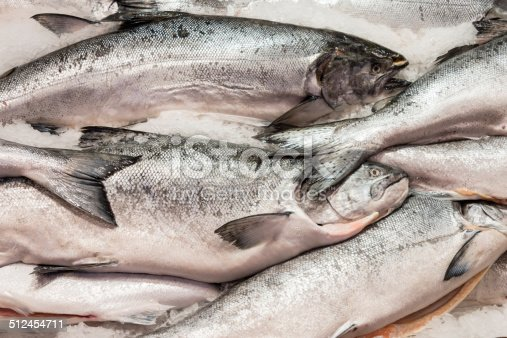 Whole salmon fish for sale at a market