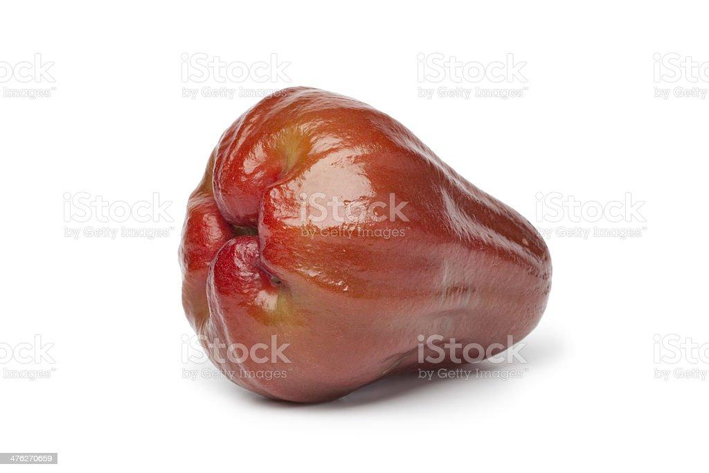Whole single fresh bell apple stock photo
