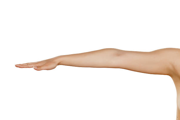 whole woman hand with the palm down on a white background - human arm stock pictures, royalty-free photos & images