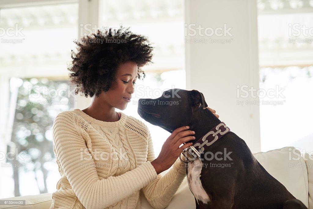 Who's a good boy? stock photo