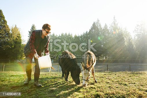 Shot of a mature woman feeding the animals on her farm