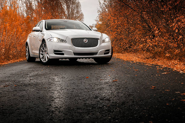 Whtie car Jaguar XJ on wet asphalt road at autumn Saratov, Russia - October 16, 2014: Jaguar XJ car on wet asphalt road at autumn jaguar car stock pictures, royalty-free photos & images