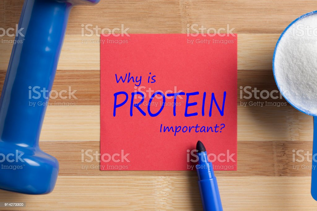 Why is PROTEIN Important written on note stock photo