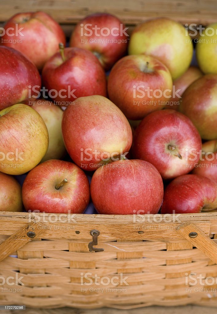 Wicker Basket full of red apples royalty-free stock photo