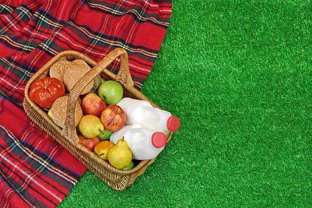 wicker basket with food and drink on the picnic  blanket - sprüche über reisen stock-fotos und bilder