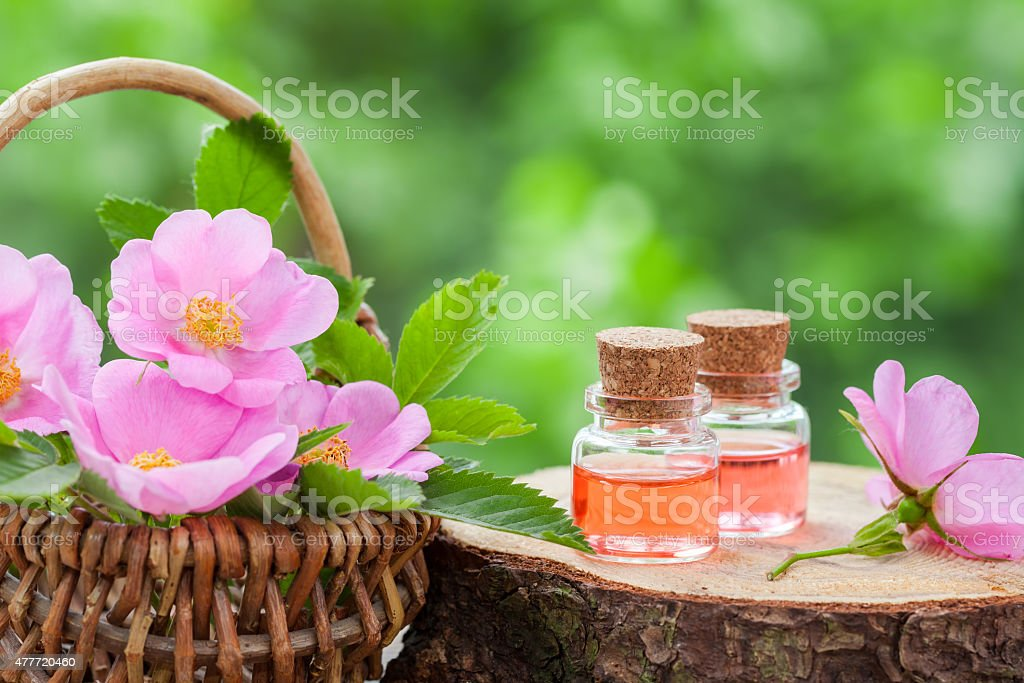 Wicker basket with rose hip flowers and bottles of oil stock photo