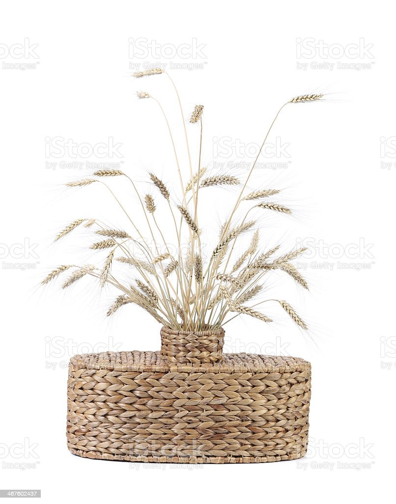 Wicker vase with wheat ears. stock photo