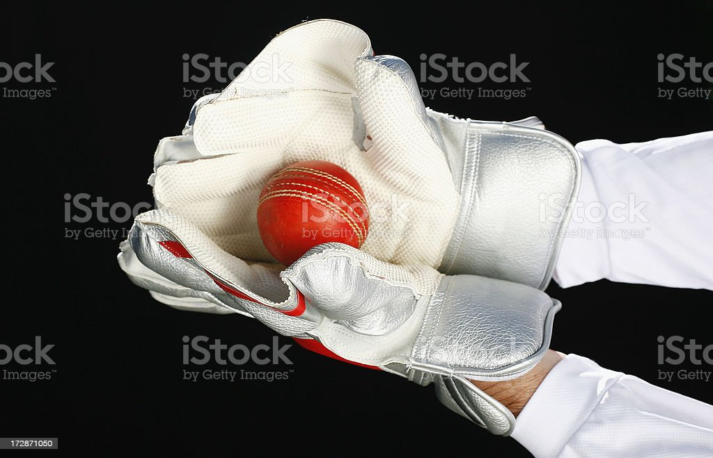 Wicket Keeper Catch royalty-free stock photo