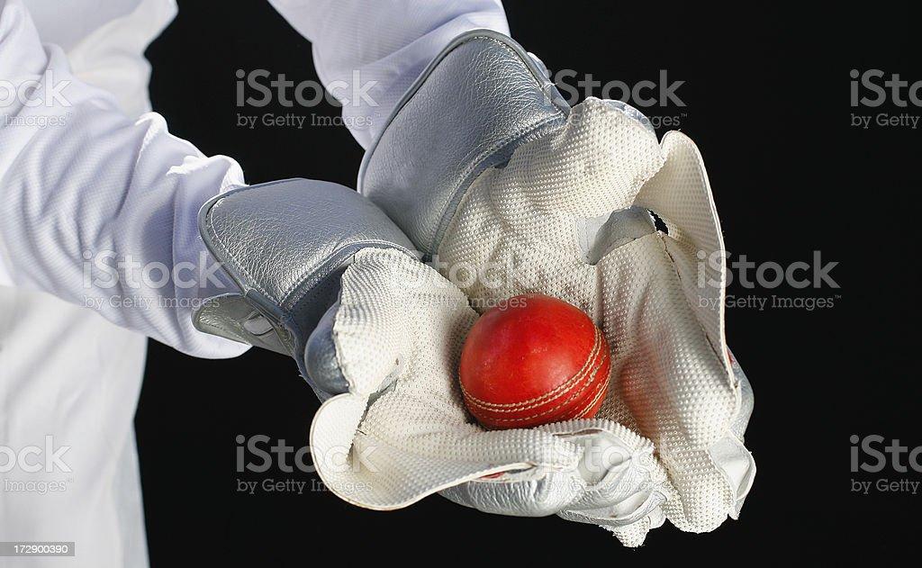 Wicket Keeper Catch stock photo