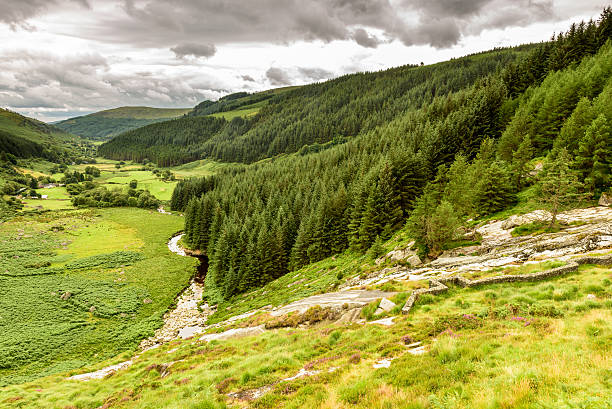Wicklow mountains valley and stream stock photo