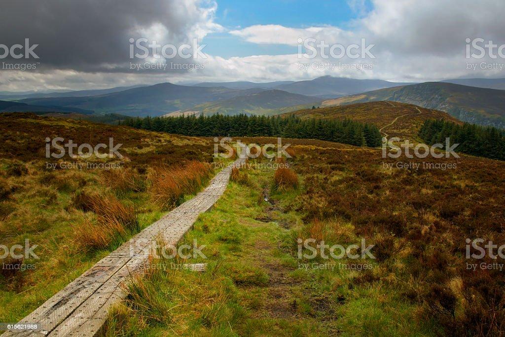 Wicklow way trail leading to the vibrant irish landscape foto