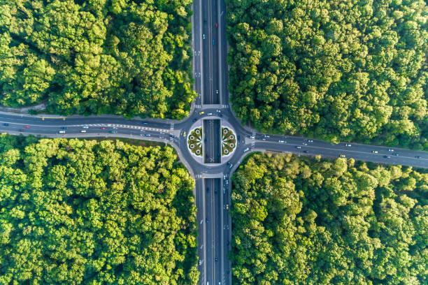 large vista aérea regardant vers le bas sur le rond-point au milieu d'une forêt magnifique - rond point carrefour photos et images de collection