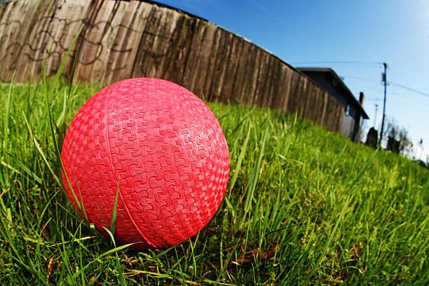 Wide Angle Dodge Ball on Grass stock photo